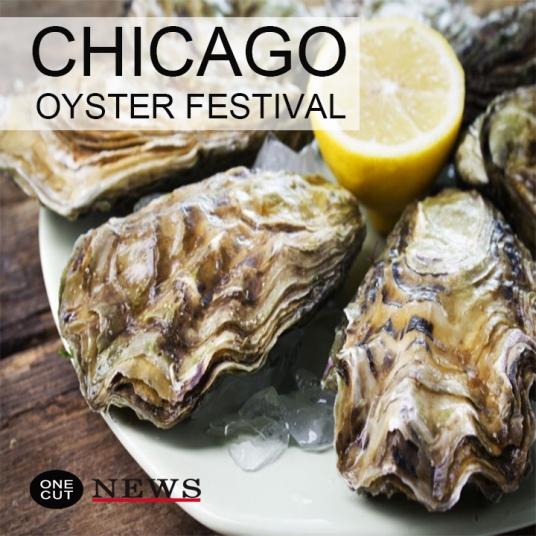 tinley-park-oyster-festival